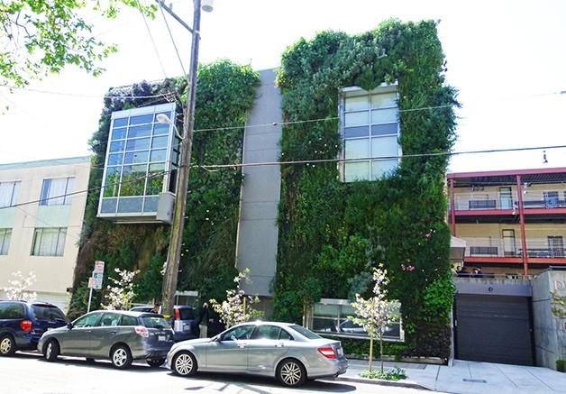 Vertical SaoFrancisco Conheça Patrick Blanc, um botânico que constrói vegetação em fachadas e paredes de vários prédios ao redor do mundo