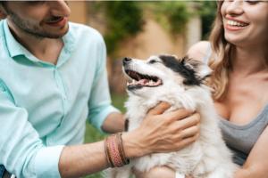 casal de homem e mulher brincando com cachorro de pequeno porte